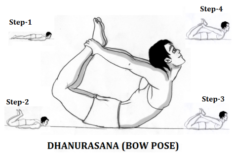 dhanurasana-steps-hindi-patanjali-yoga